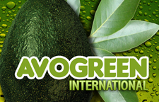 AVOGREEN LABEL