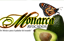 MONARCA AVOCADOS